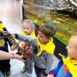 Dzień Dziecka w Muzeum Przyrodniczym