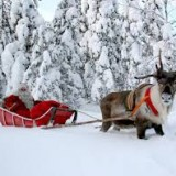Wioska Świętego Mikołaja, Laponia – warsztaty podróżnicze