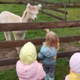 Wycieczka inauguracyjna Alpaca Home