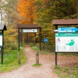 Wycieczka do Puszczy Niepołomickiej – ścieżka dydaktyczna